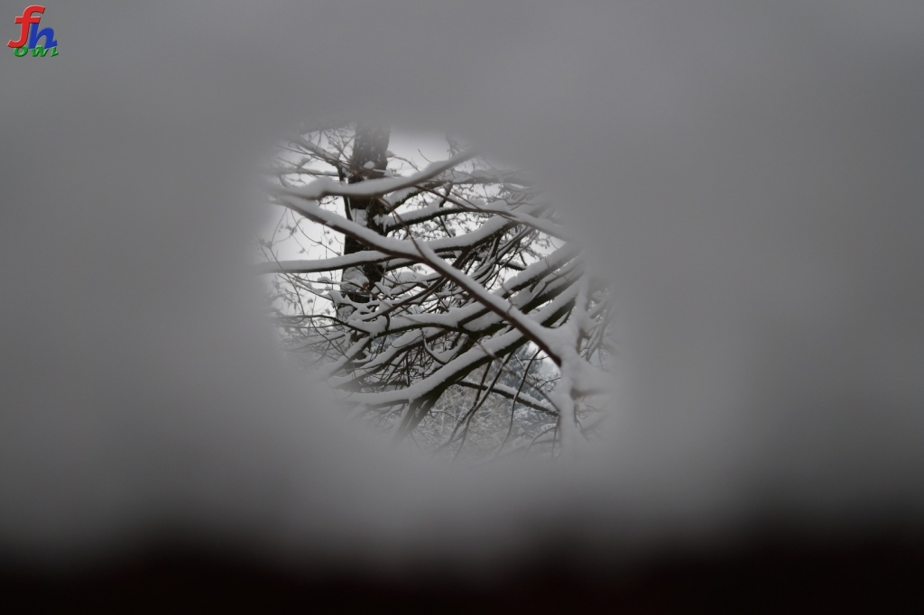 winter00010