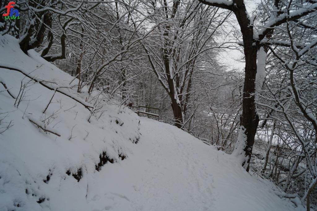 winter00011